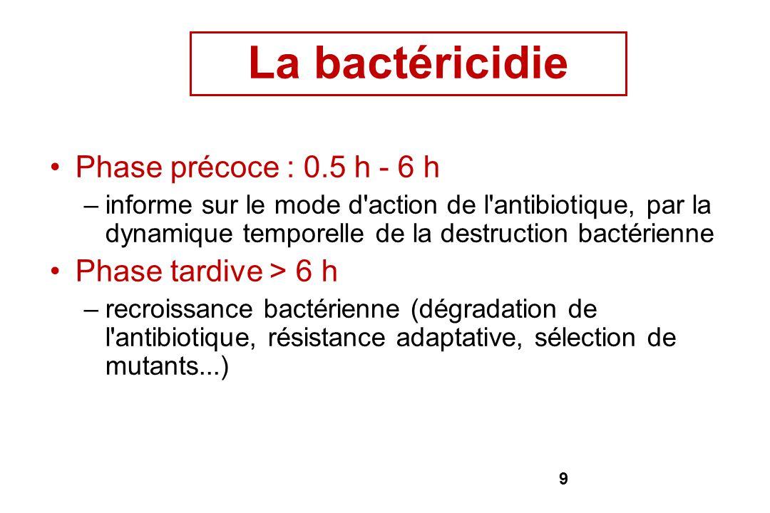 La bactéricidie Phase précoce : 0.5 h - 6 h Phase tardive > 6 h