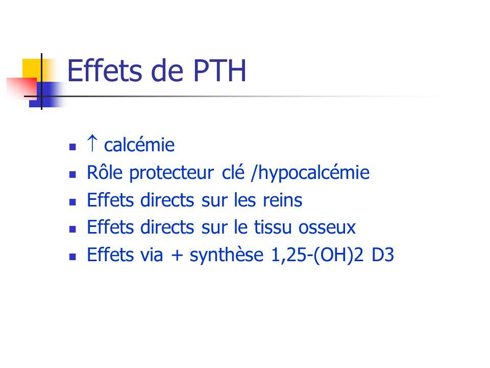 Effets de PTH  calcémie Rôle protecteur clé /hypocalcémie