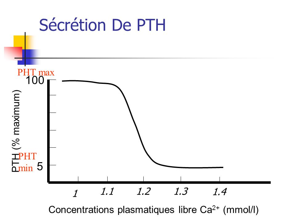Sécrétion De PTH 100 5 PHT max PTH (% maximum) PHT min 1.1 1.2 1.3 1