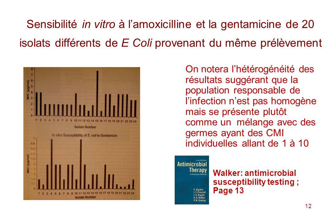 Sensibilité in vitro à l'amoxicilline et la gentamicine de 20 isolats différents de E Coli provenant du même prélèvement