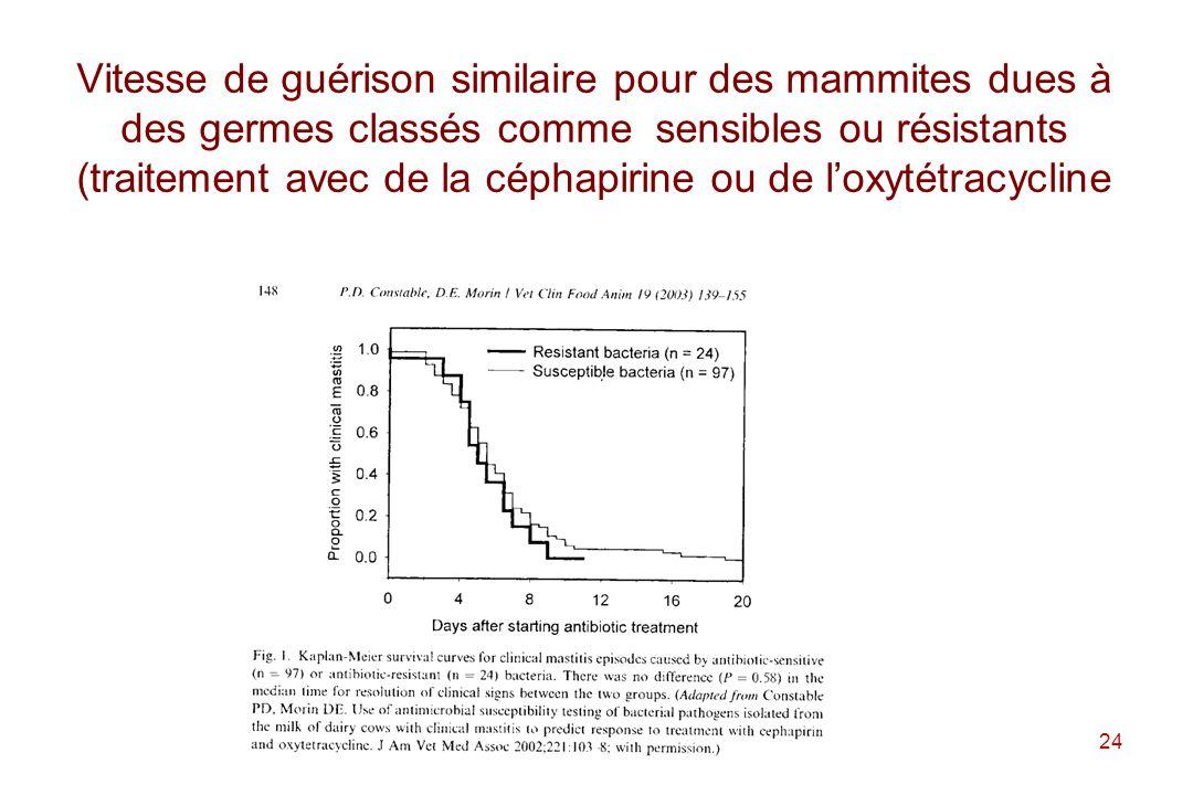 Vitesse de guérison similaire pour des mammites dues à des germes classés comme sensibles ou résistants (traitement avec de la céphapirine ou de l'oxytétracycline