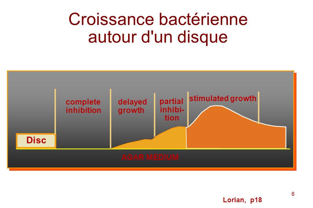 Croissance bactérienne autour d un disque