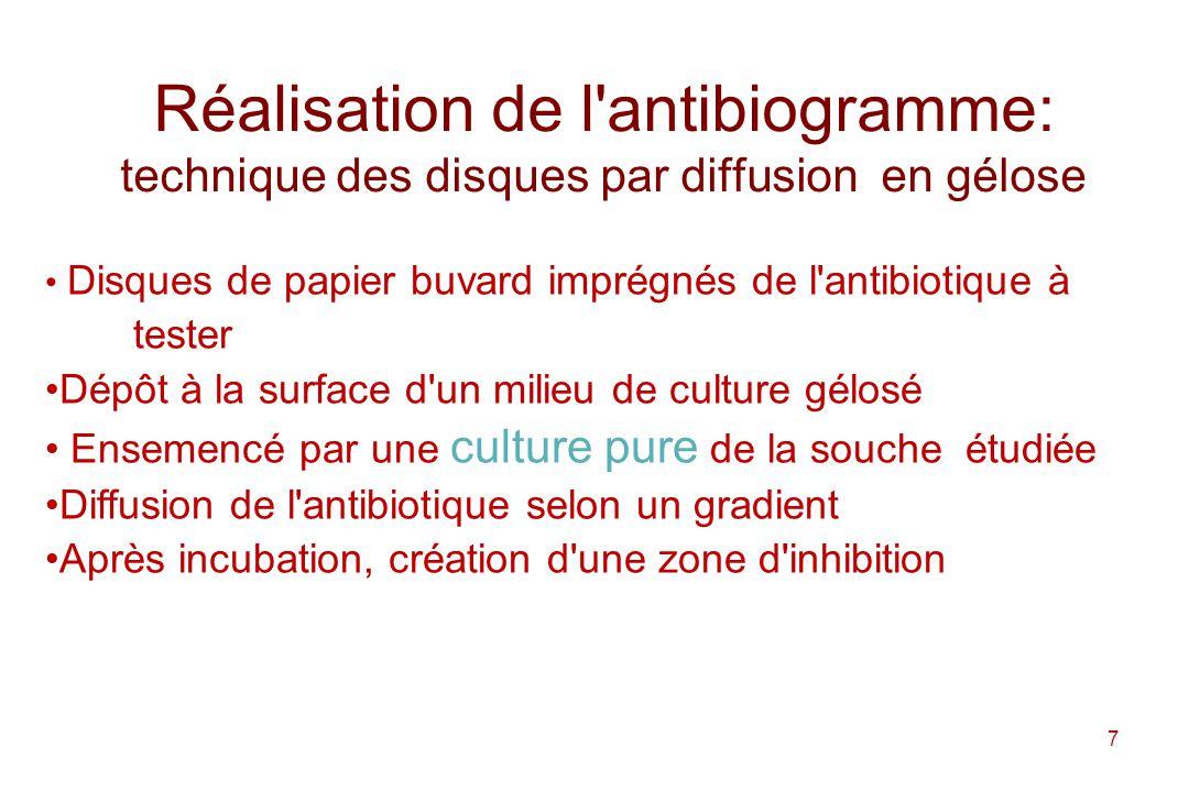Réalisation de l antibiogramme: technique des disques par diffusion en gélose