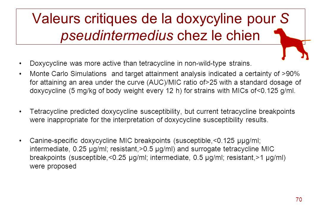 Valeurs critiques de la doxycyline pour S pseudintermedius chez le chien
