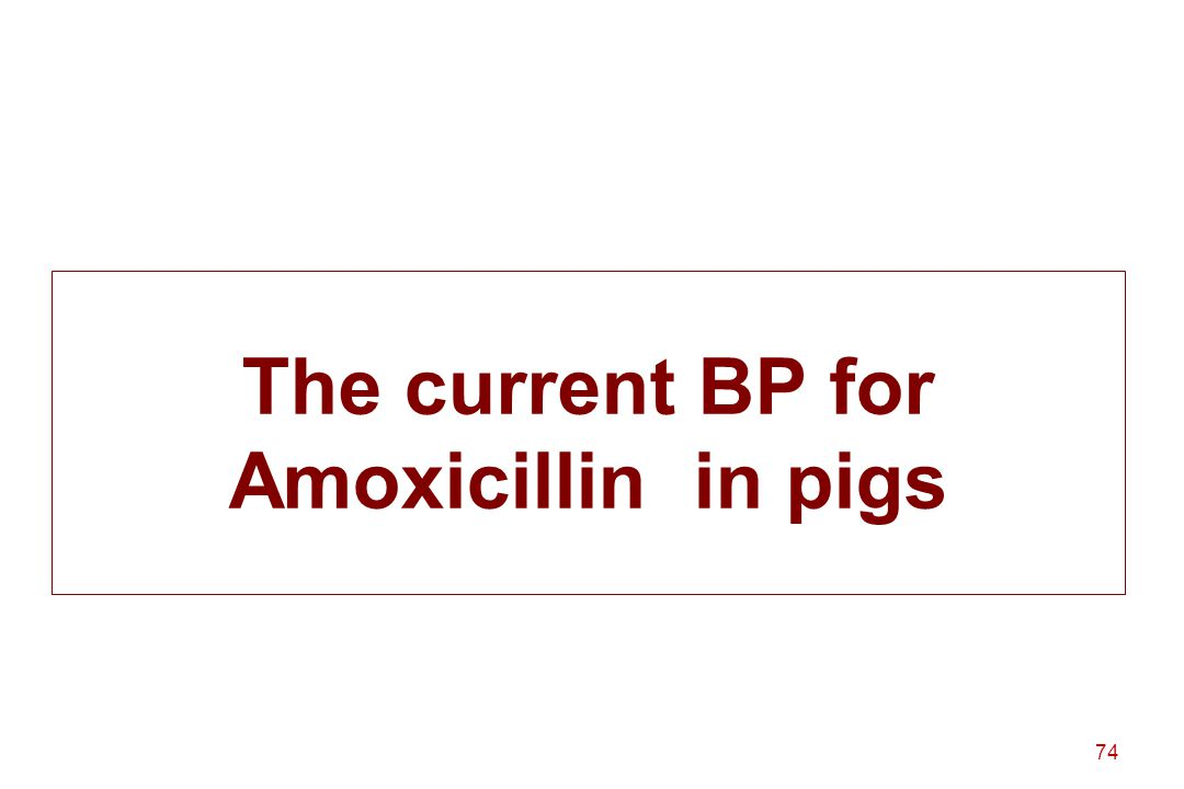 The current BP for Amoxicillin in pigs