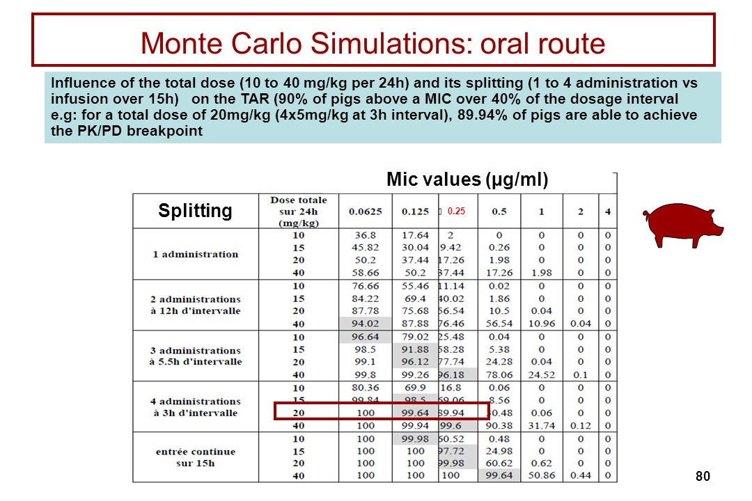 Monte Carlo Simulations: oral route