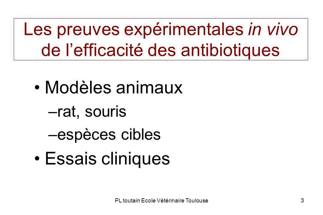 Les preuves expérimentales in vivo de l'efficacité des antibiotiques
