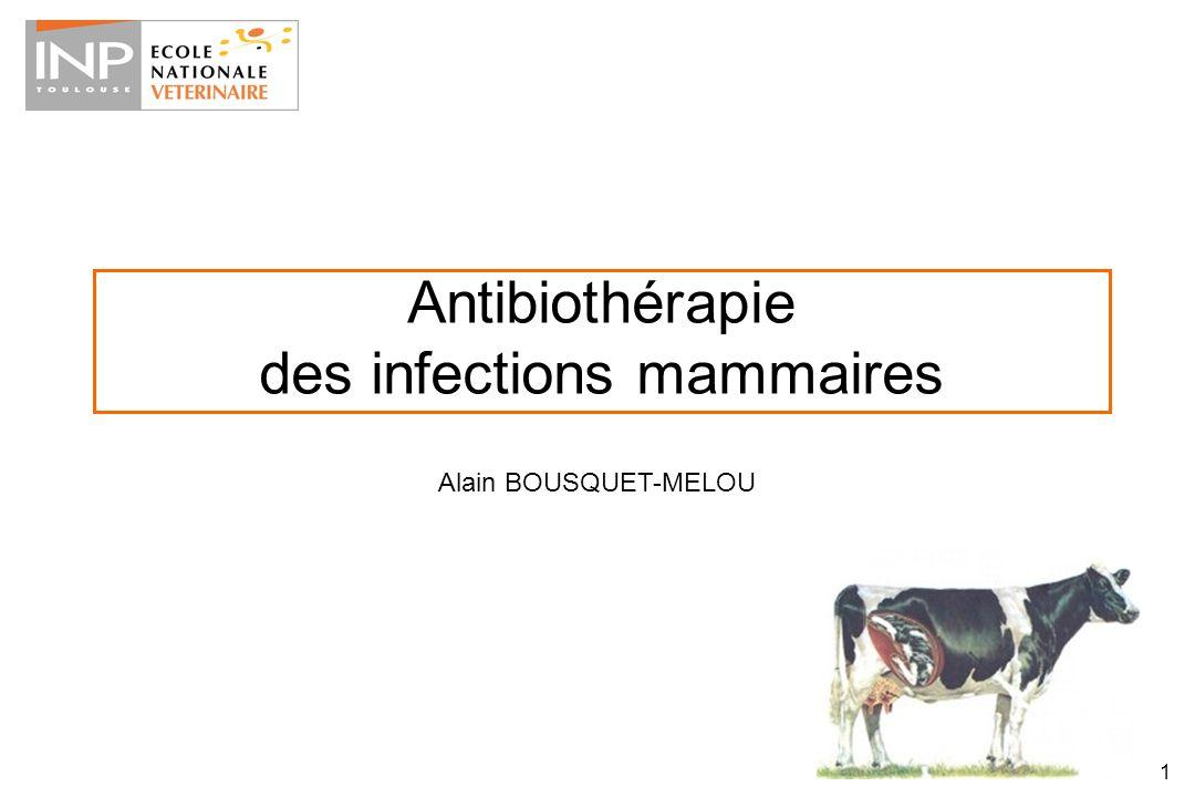 Antibiothérapie des infections mammaires