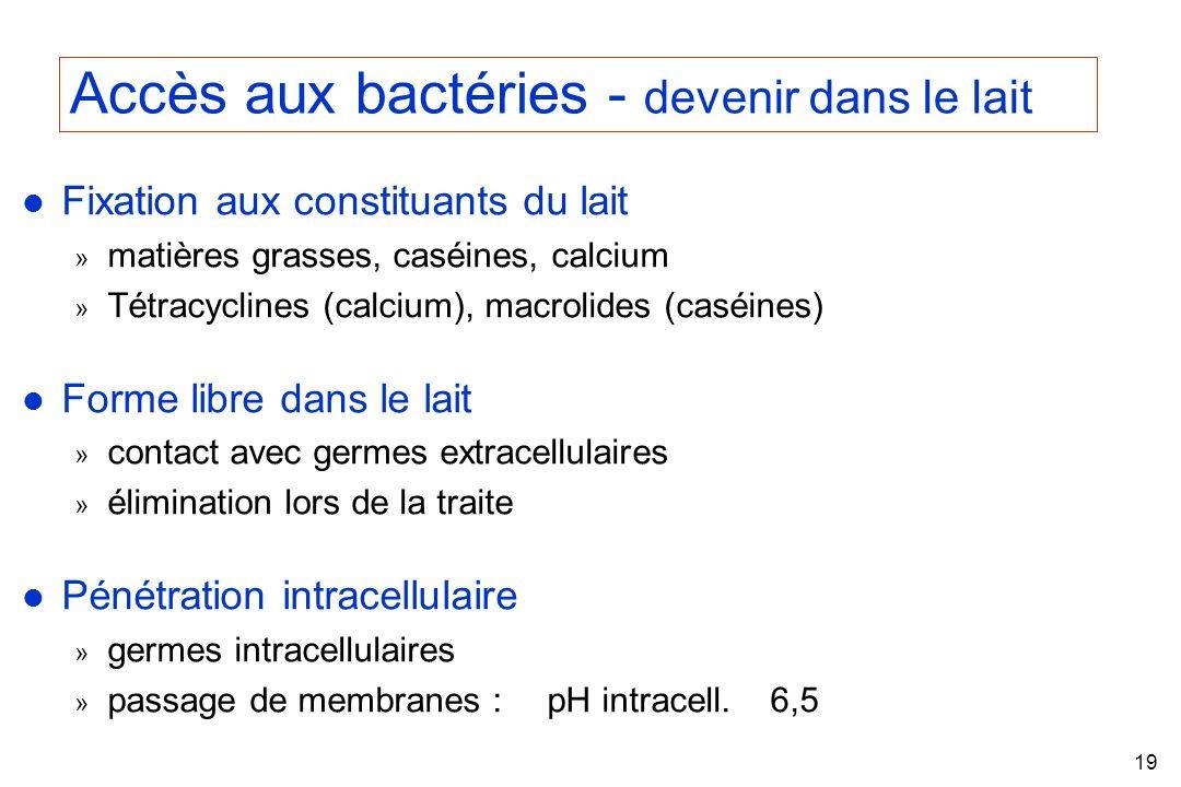 Accès aux bactéries - devenir dans le lait
