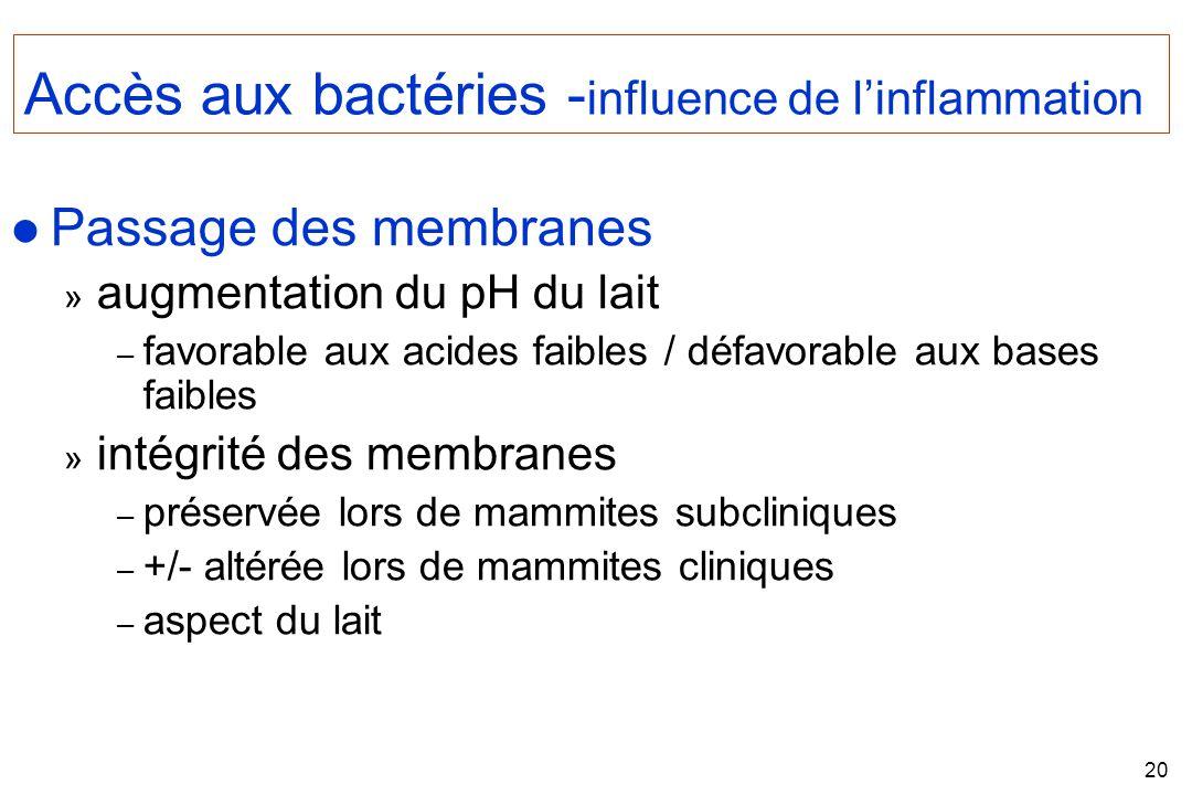 Accès aux bactéries -influence de l'inflammation