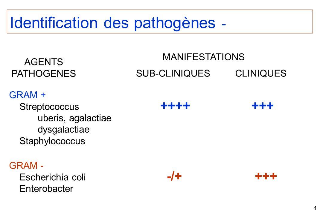 Identification des pathogènes -