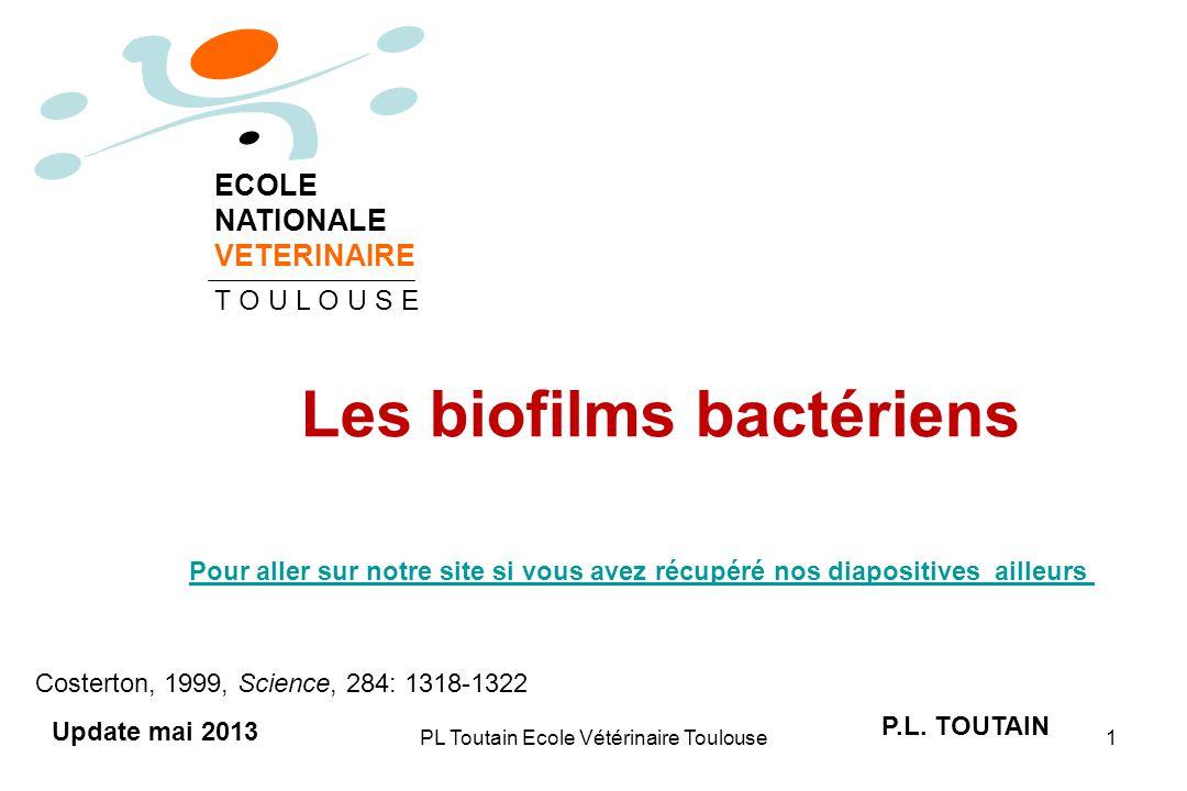 Les biofilms bactériens