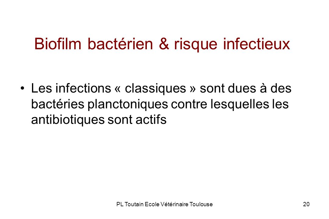 Biofilm bactérien & risque infectieux