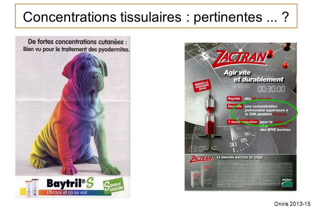Concentrations tissulaires : pertinentes ...