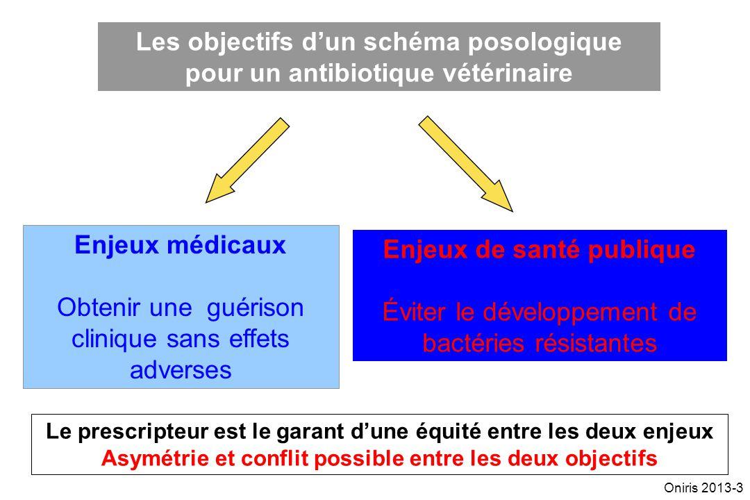 Les objectifs d'un schéma posologique pour un antibiotique vétérinaire