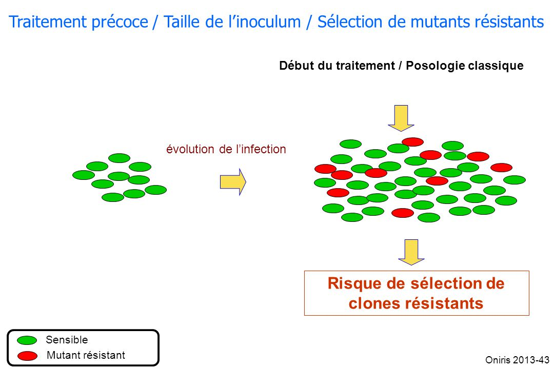 Risque de sélection de clones résistants