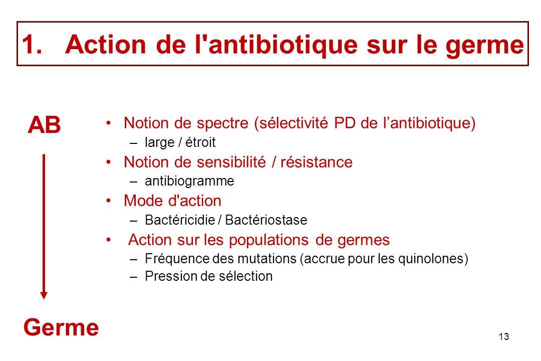 Action de l antibiotique sur le germe