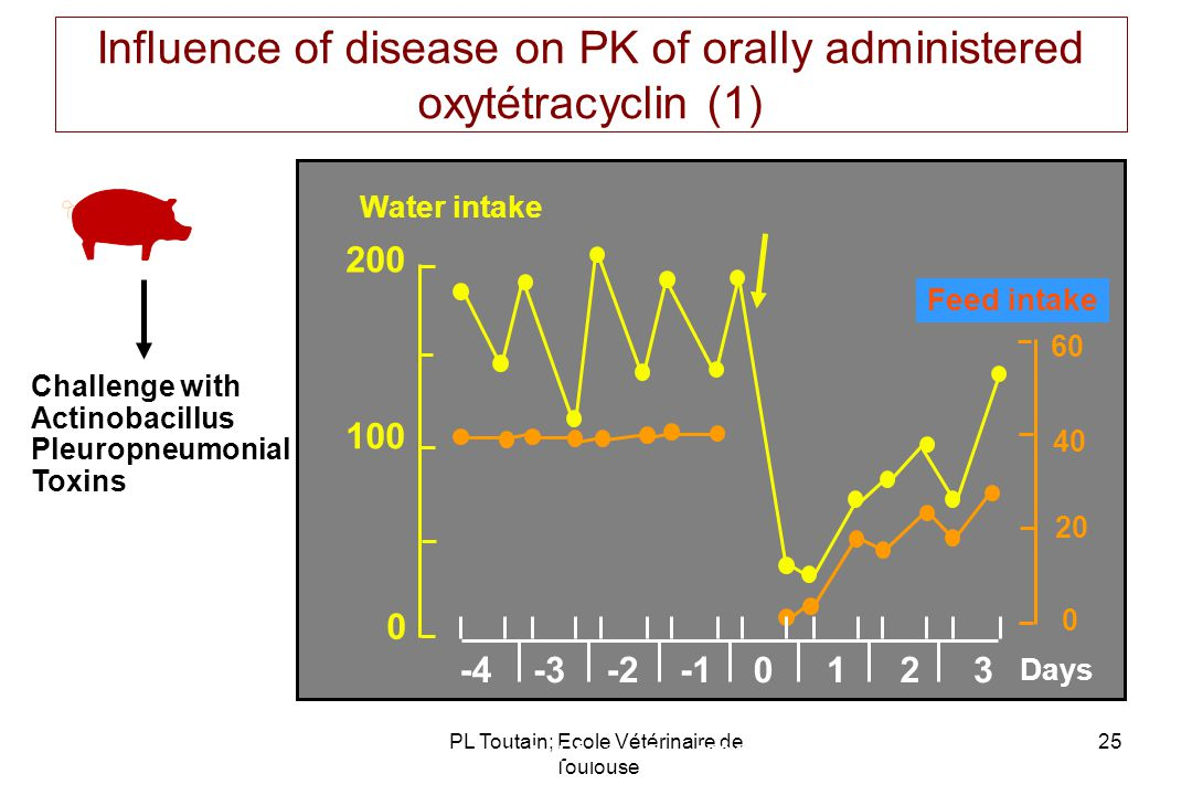 Influence of disease on PK of orally administered oxytétracyclin (1)