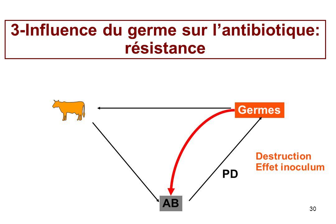 3-Influence du germe sur l'antibiotique: