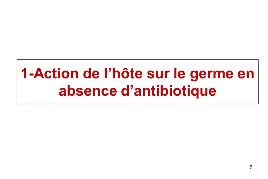 1-Action de l'hôte sur le germe en absence d'antibiotique