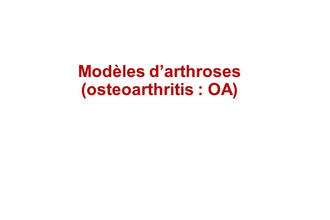 Modèles d'arthroses (osteoarthritis : OA)