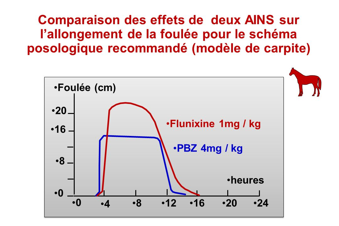 Comparaison des effets de deux AINS sur l'allongement de la foulée pour le schéma posologique recommandé (modèle de carpite)