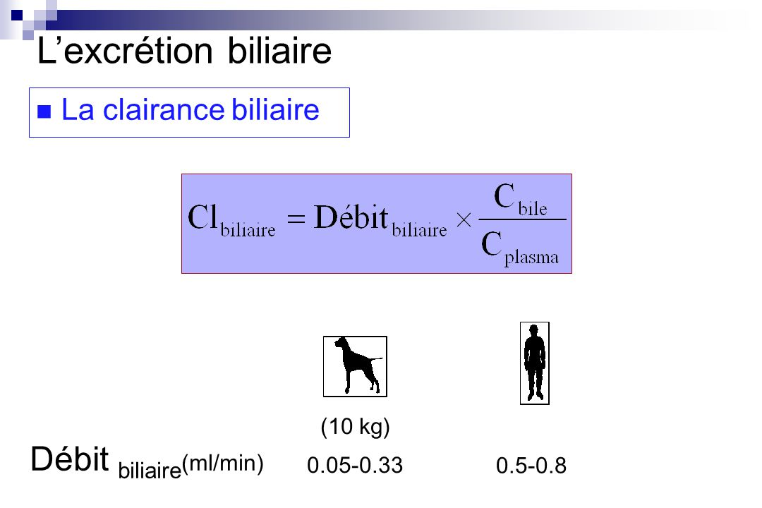 L'excrétion biliaire Débit biliaire(ml/min) La clairance biliaire