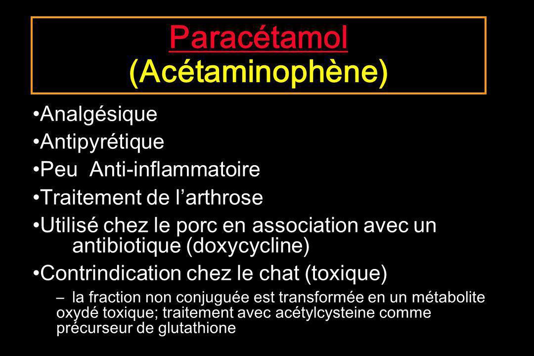 Paracétamol (Acétaminophène)