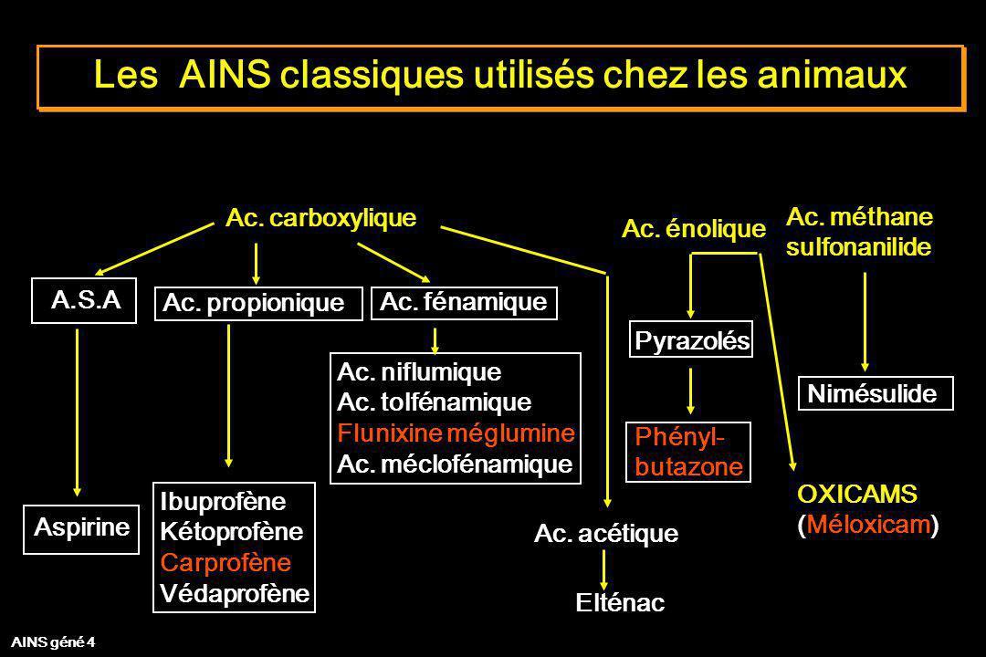 Les AINS classiques utilisés chez les animaux