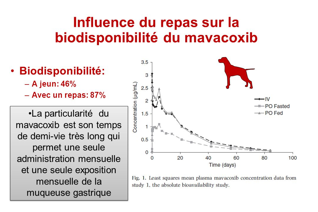 Influence du repas sur la biodisponibilité du mavacoxib