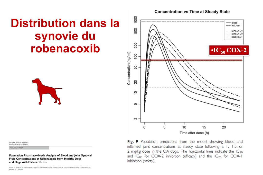 Distribution dans la synovie du robenacoxib