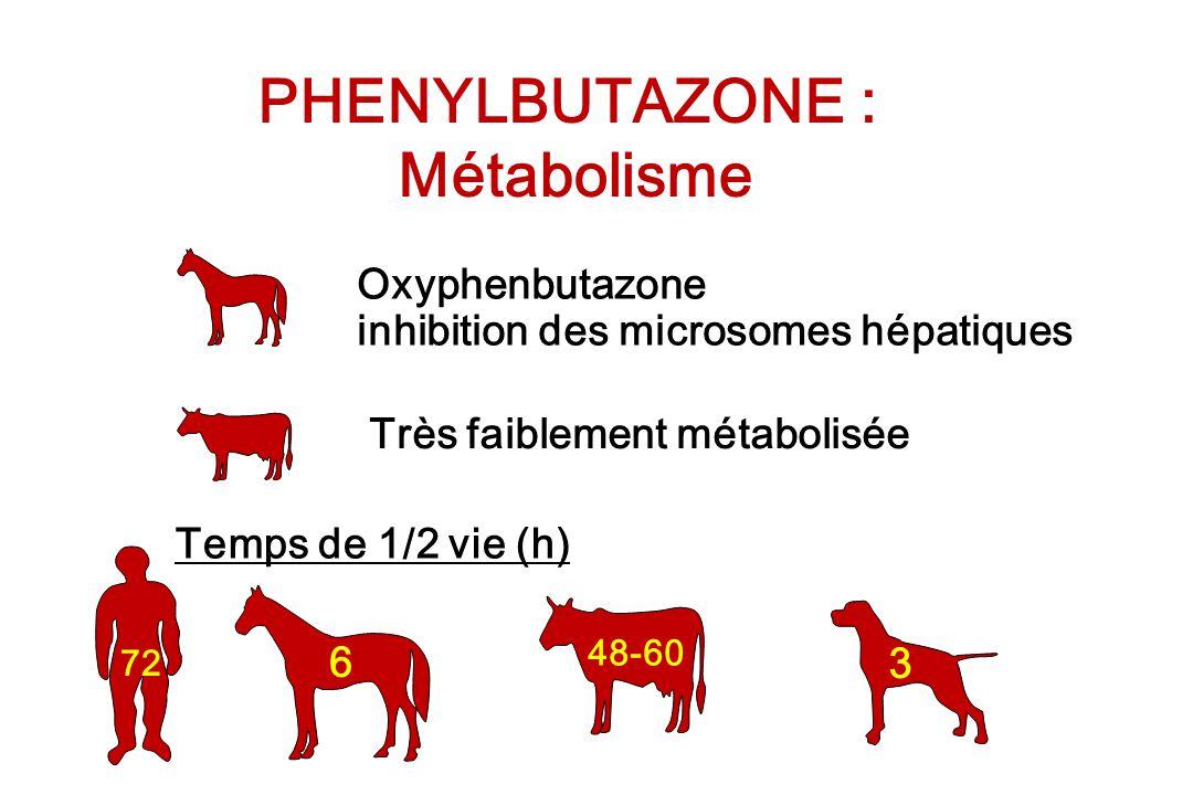 PHENYLBUTAZONE : Métabolisme