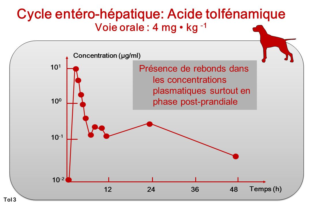 Cycle entéro-hépatique: Acide tolfénamique