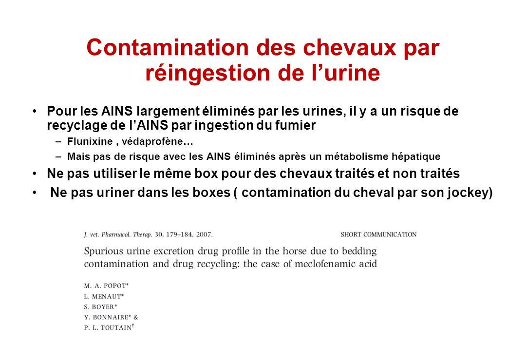 Contamination des chevaux par réingestion de l'urine