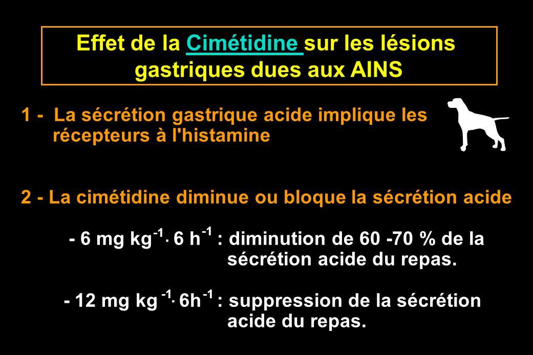 Effet de la Cimétidine sur les lésions gastriques dues aux AINS
