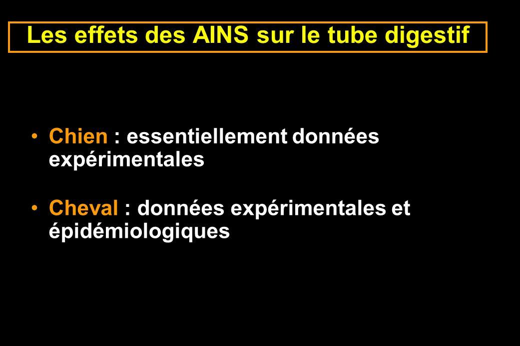 Les effets des AINS sur le tube digestif