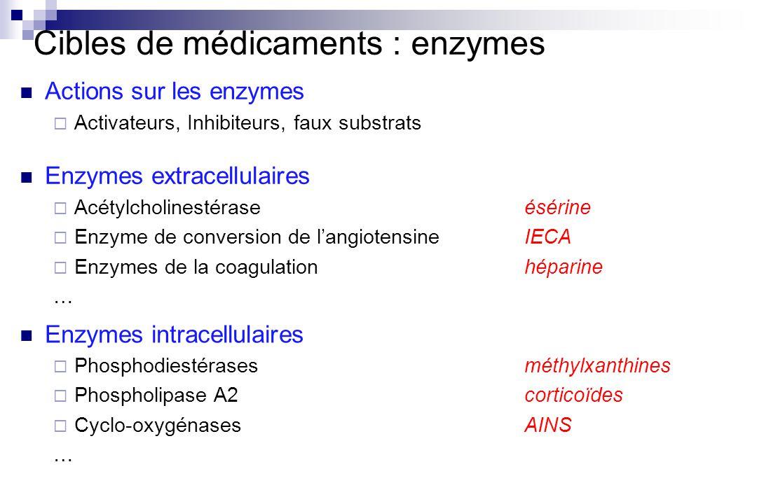 Cibles de médicaments : enzymes