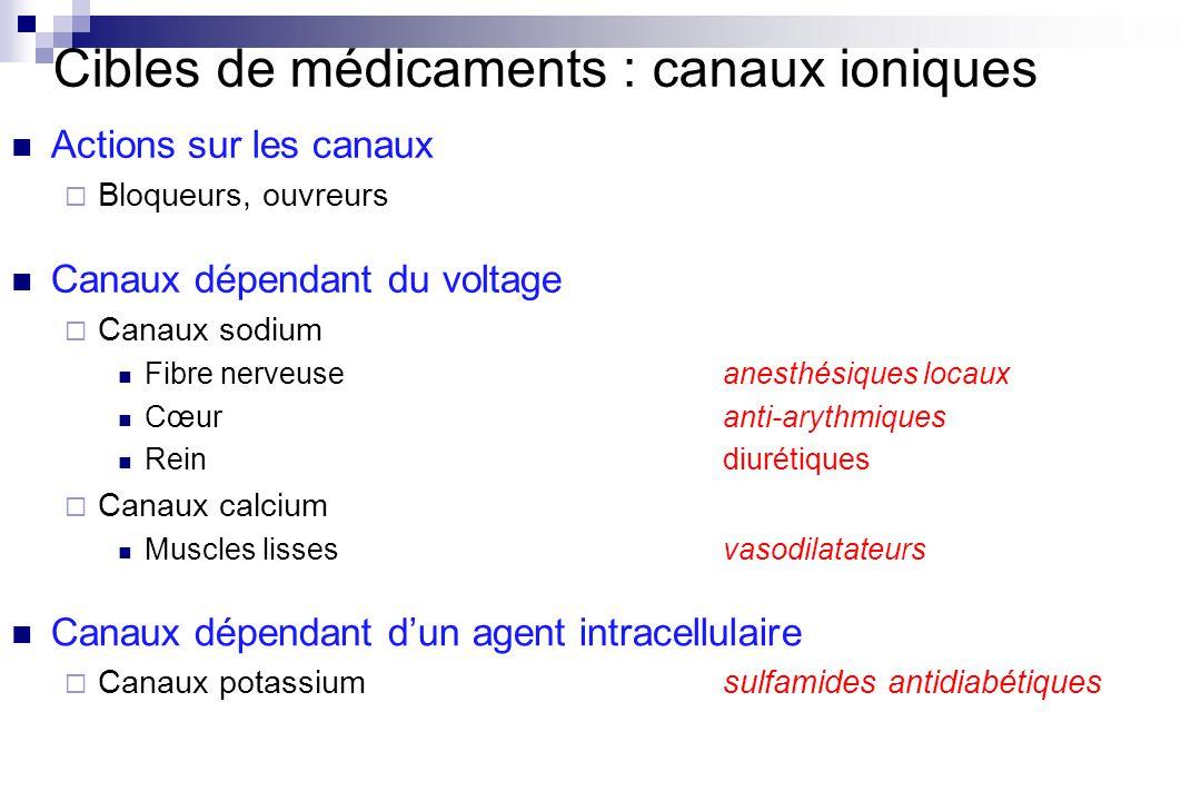 Cibles de médicaments : canaux ioniques