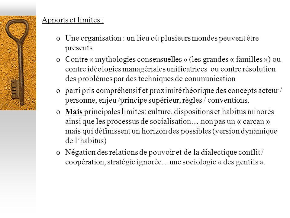 Apports et limites : Une organisation : un lieu où plusieurs mondes peuvent être présents.