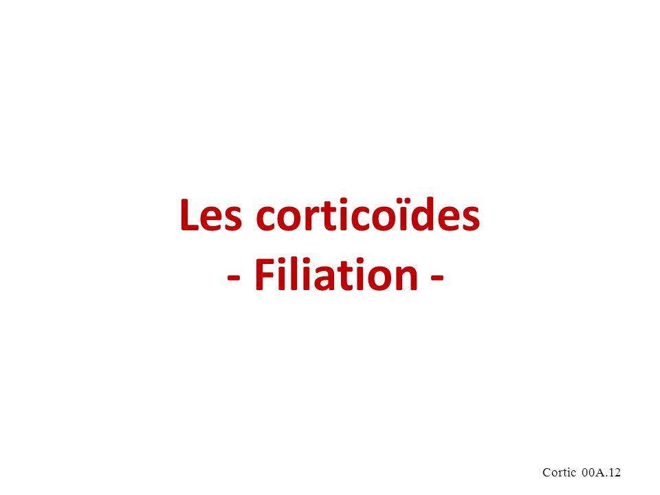 Les corticoïdes - Filiation -