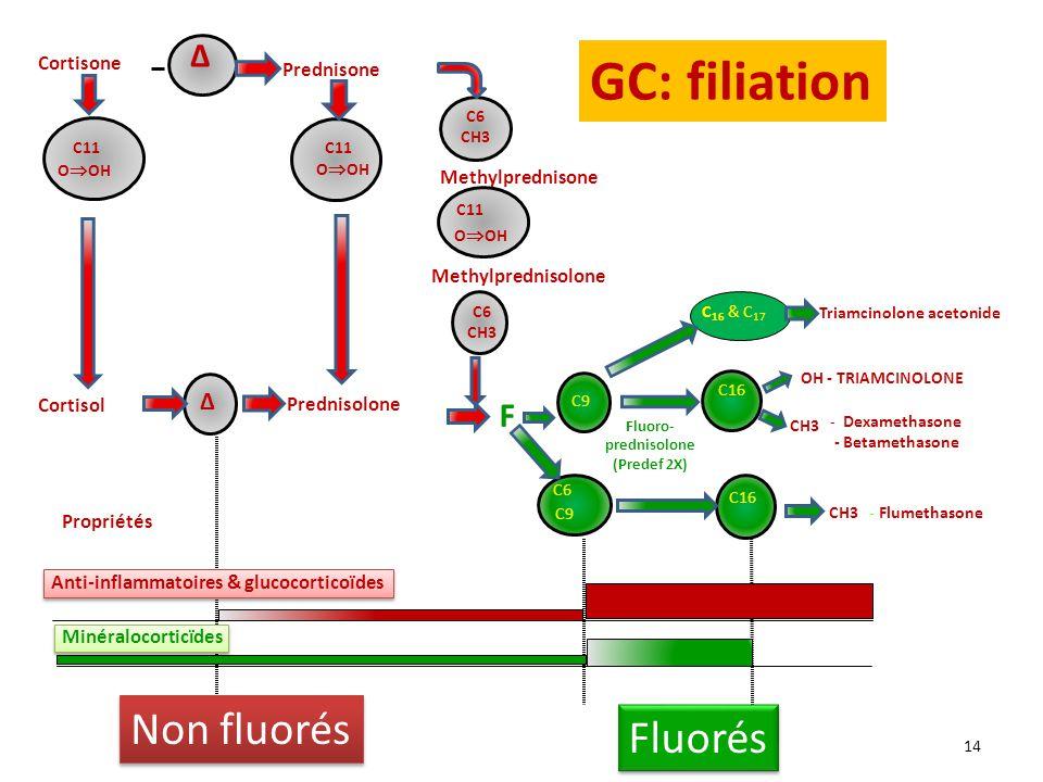 GC: filiation Non fluorés Fluorés Δ F Δ Cortisone Prednisone