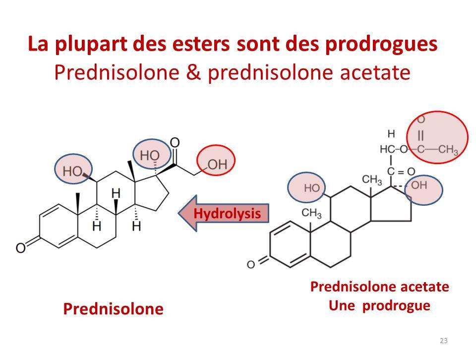 La plupart des esters sont des prodrogues Prednisolone & prednisolone acetate