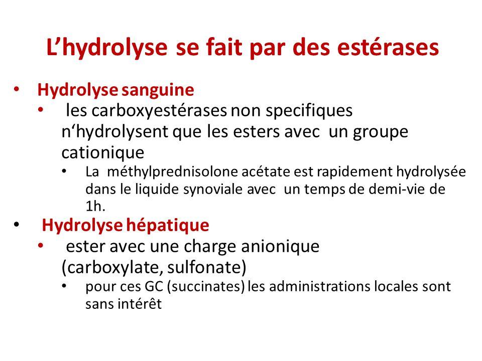 L'hydrolyse se fait par des estérases