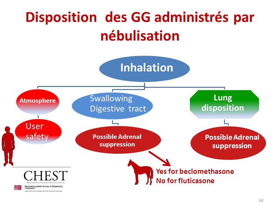 Disposition des GG administrés par nébulisation