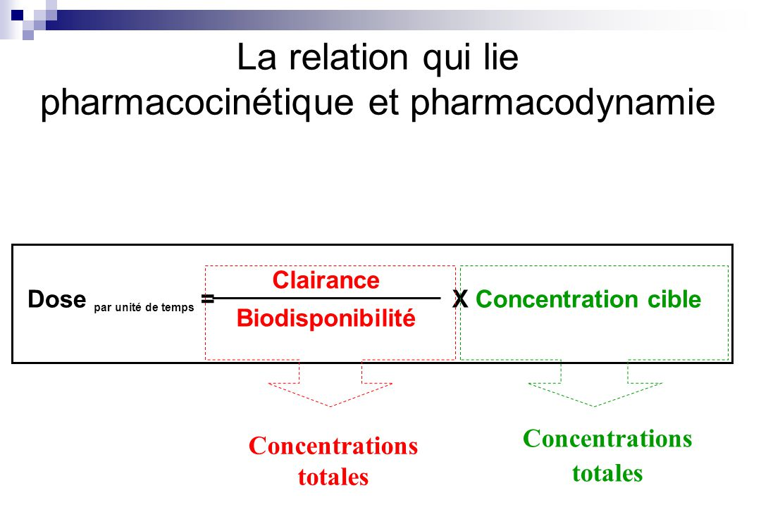 La relation qui lie pharmacocinétique et pharmacodynamie