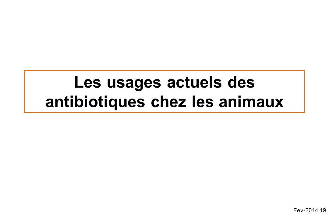 Les usages actuels des antibiotiques chez les animaux
