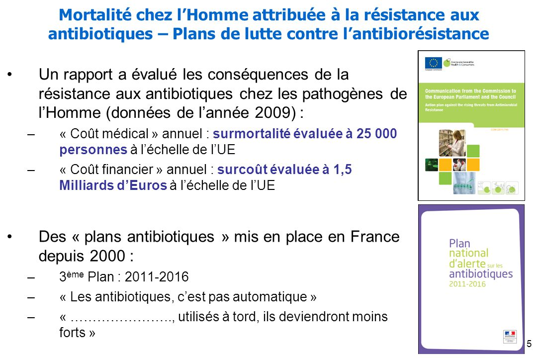 Des « plans antibiotiques » mis en place en France depuis 2000 :