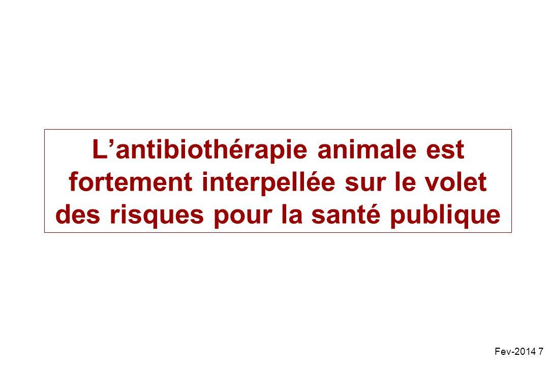 L'antibiothérapie animale est fortement interpellée sur le volet des risques pour la santé publique