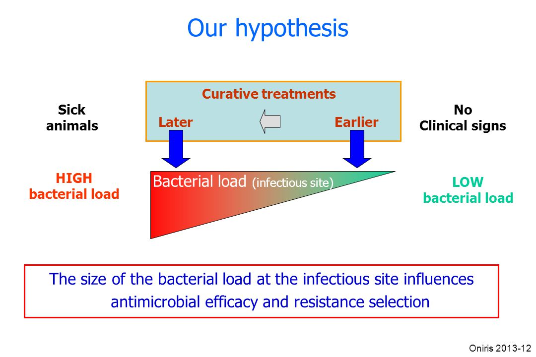 Our hypothesis Bacterial load (infectious site)‏