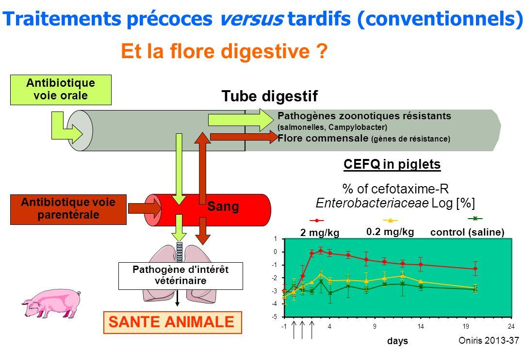 Traitements précoces versus tardifs (conventionnels)